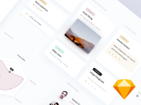 dribbble_shot_2-754195.png