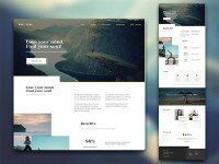 dribbble-post-wellness-185950.jpg