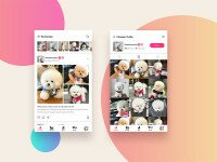 roxi-social-app-for-pet-lover-free-psd-x4-675406.jpg